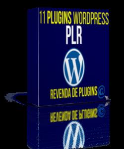 11 plugin plr